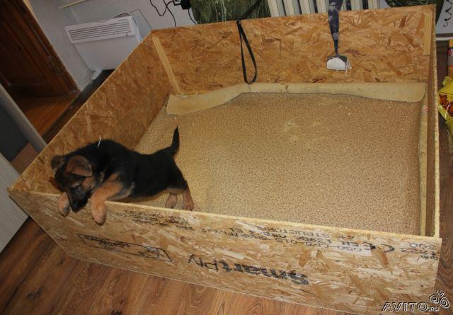 Как сделать вольер для собаки в квартиру